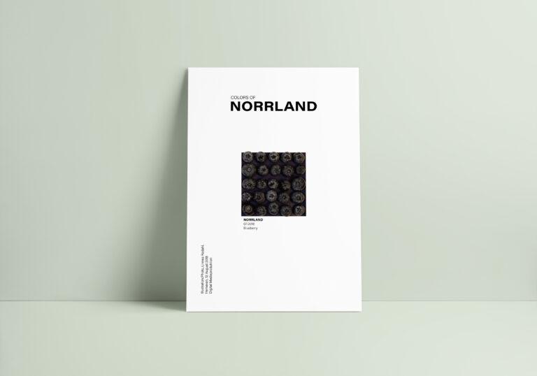Poster_blåbär