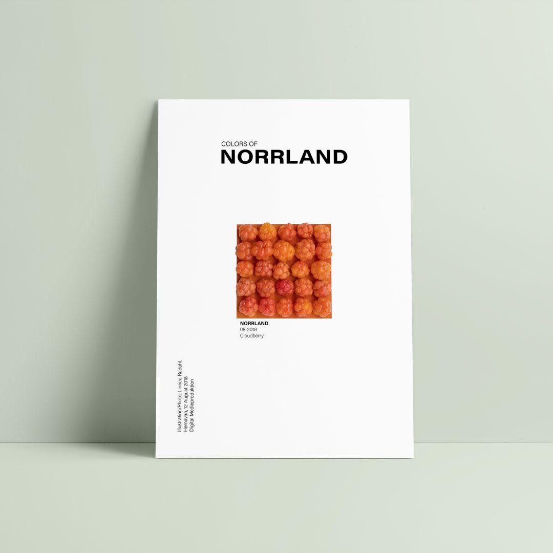 Poster_hjortron