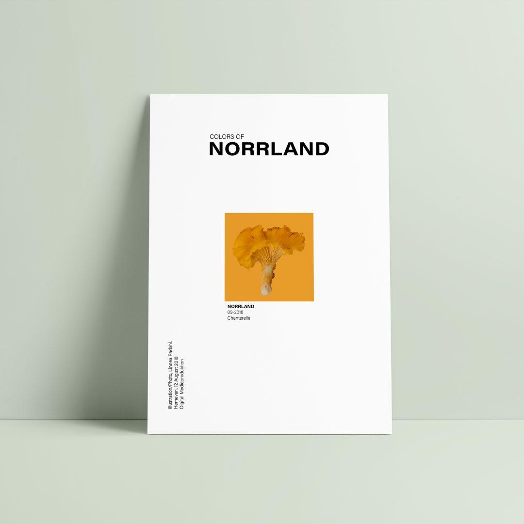 Poster_kantarell